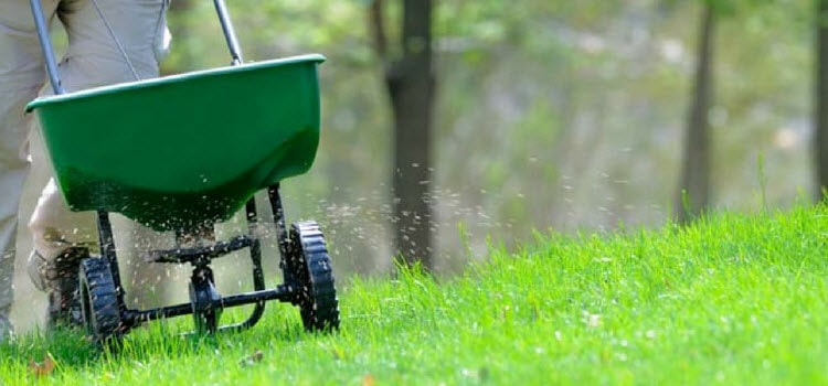 How to Select Right Lawn Spreader?